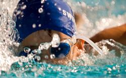 Swimming caffeine caffeinewonderful helps for Happy fish swimming